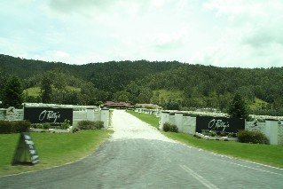 O'Reilly's Winery Canungra Valley